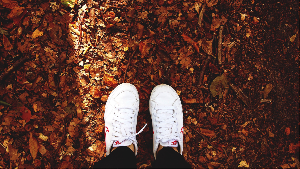 The Benefits Of Running In Autumn