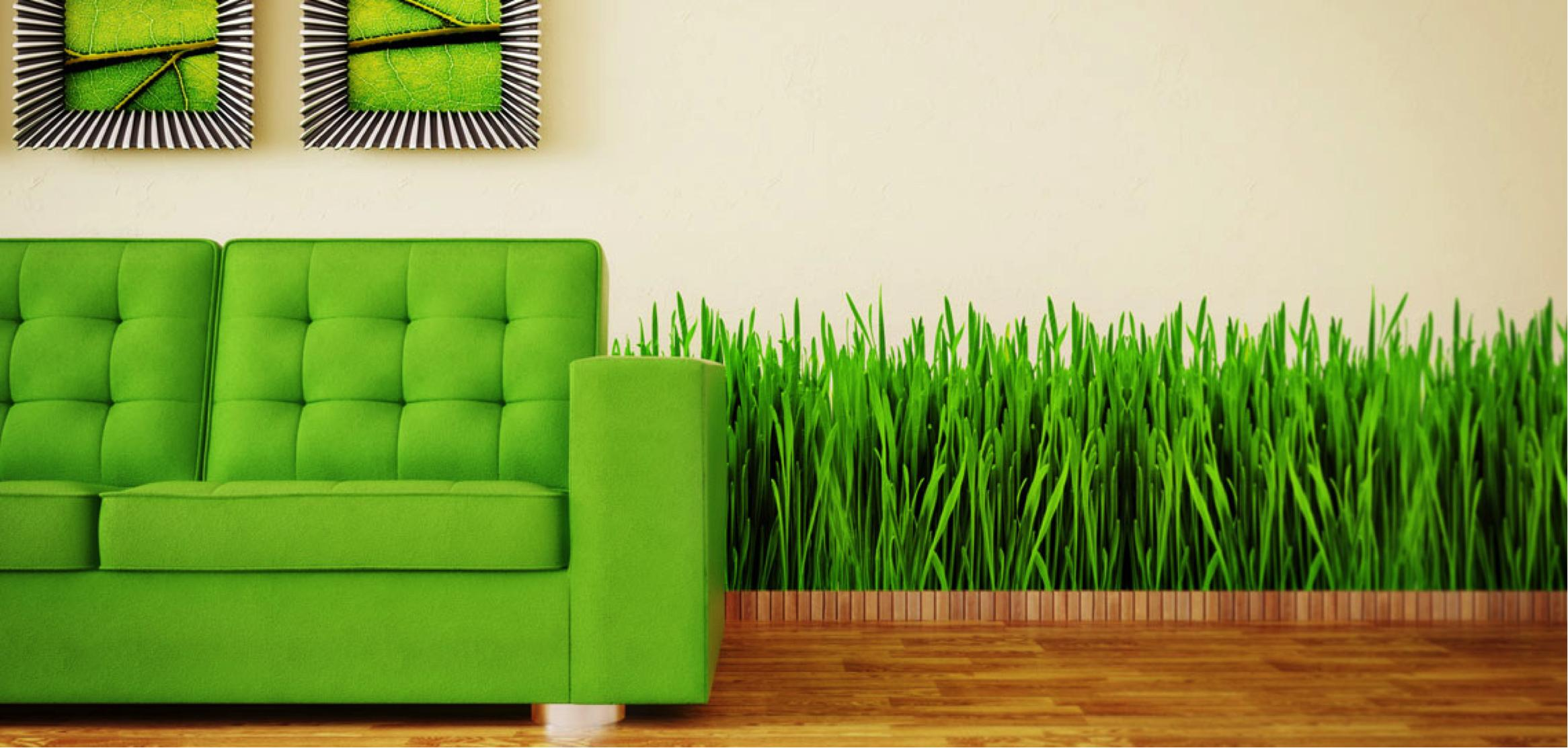 Tips To Make Your Home More Green
